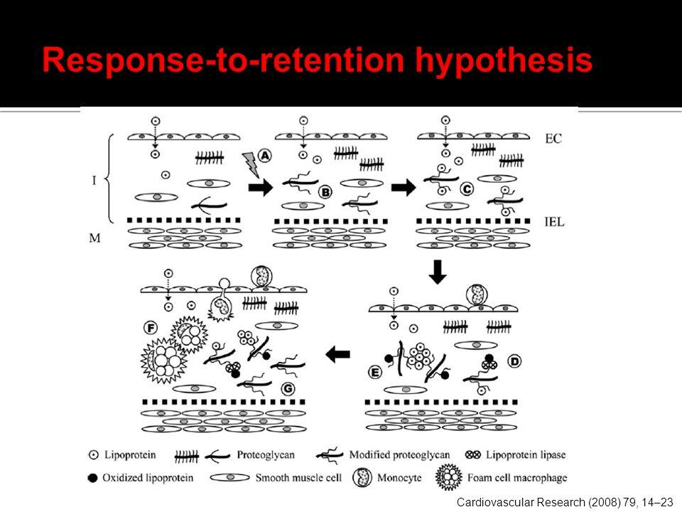Response-to-retention hypothesis