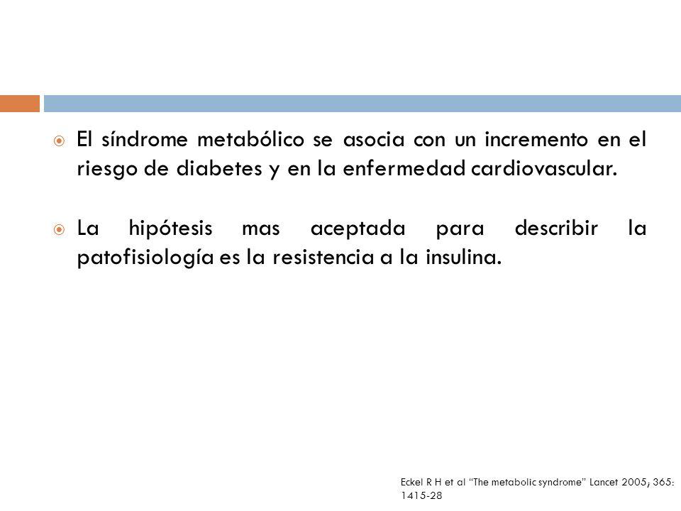 El síndrome metabólico se asocia con un incremento en el riesgo de diabetes y en la enfermedad cardiovascular.