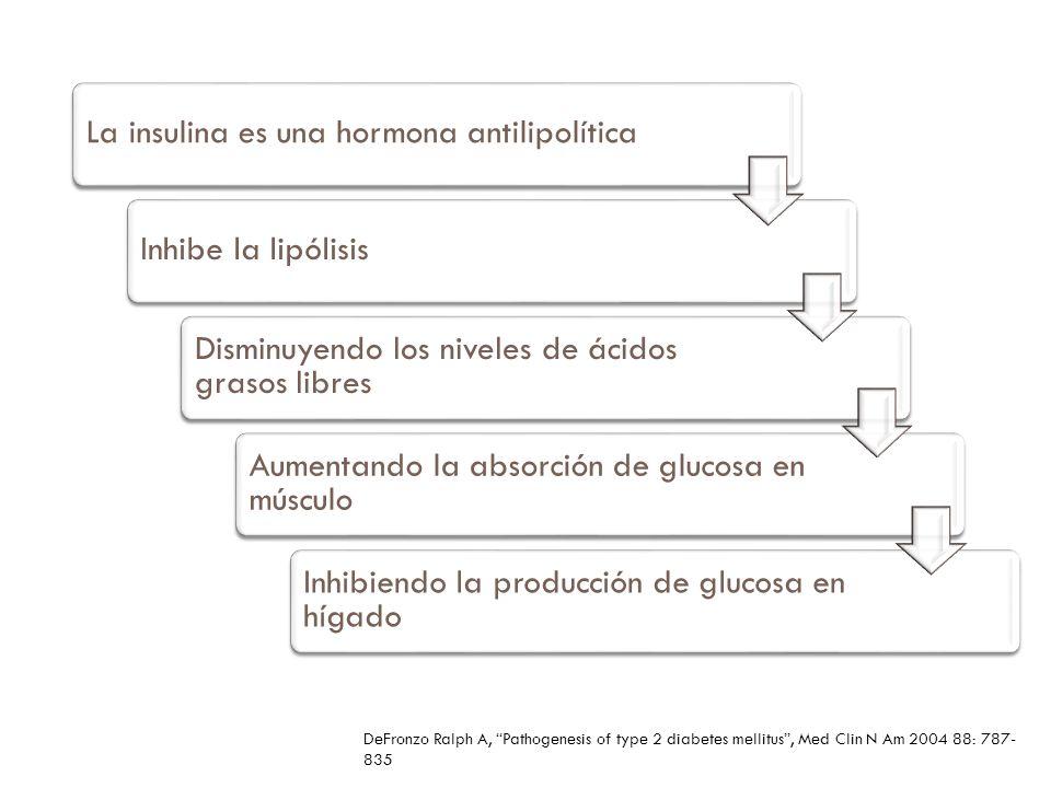 La insulina es una hormona antilipolítica Inhibe la lipólisis