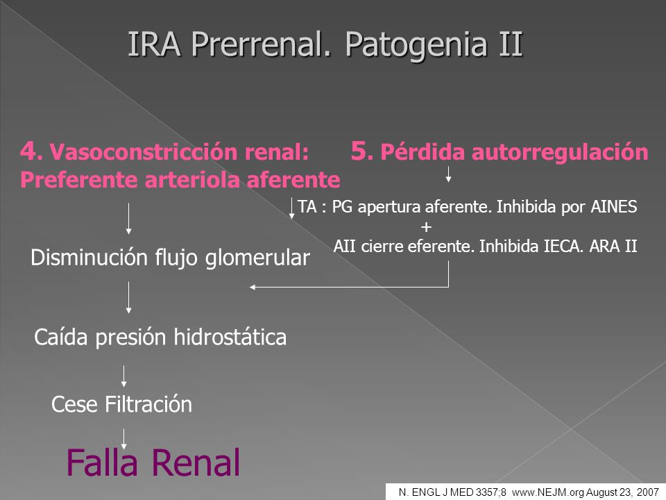 IRA Prerrenal. Patogenia II