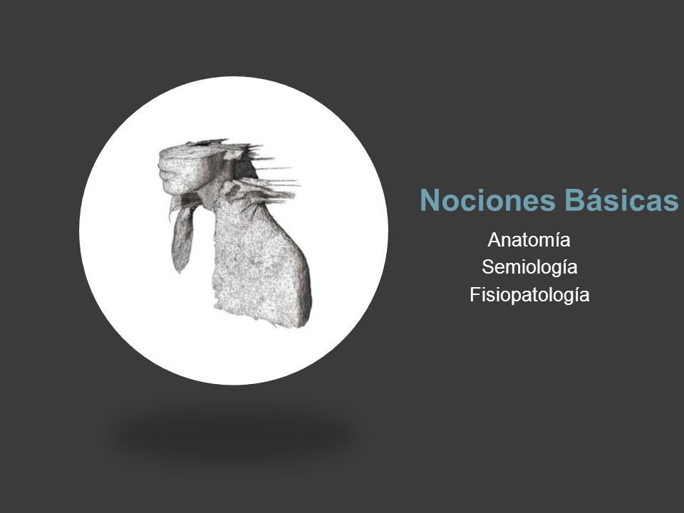 Nociones Básicas Anatomía Semiología Fisiopatología