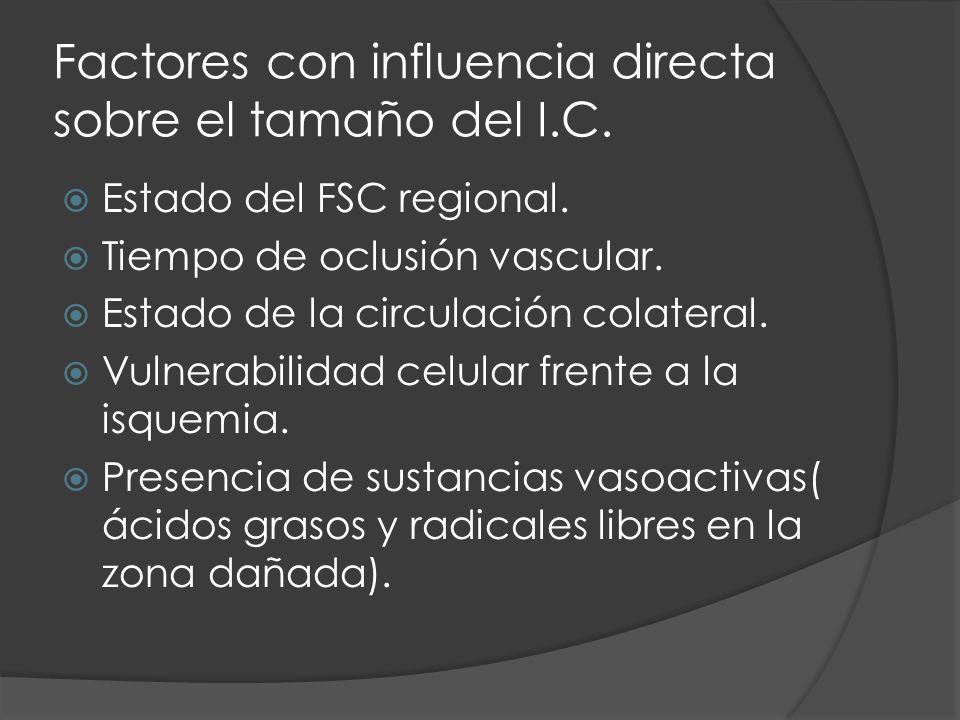 Factores con influencia directa sobre el tamaño del I.C.