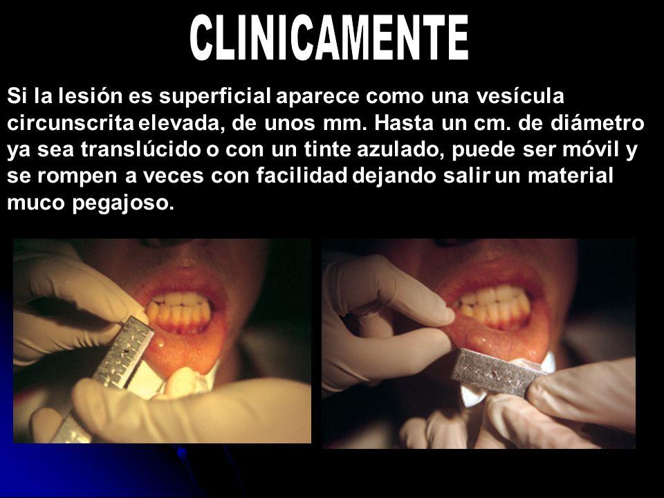 CLINICAMENTE