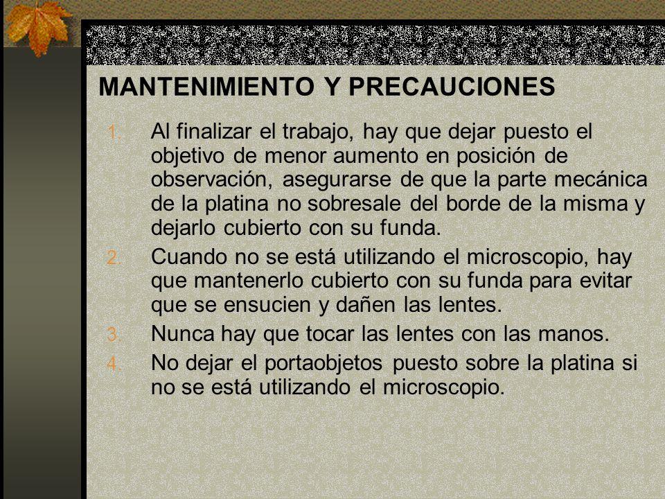 MANTENIMIENTO Y PRECAUCIONES