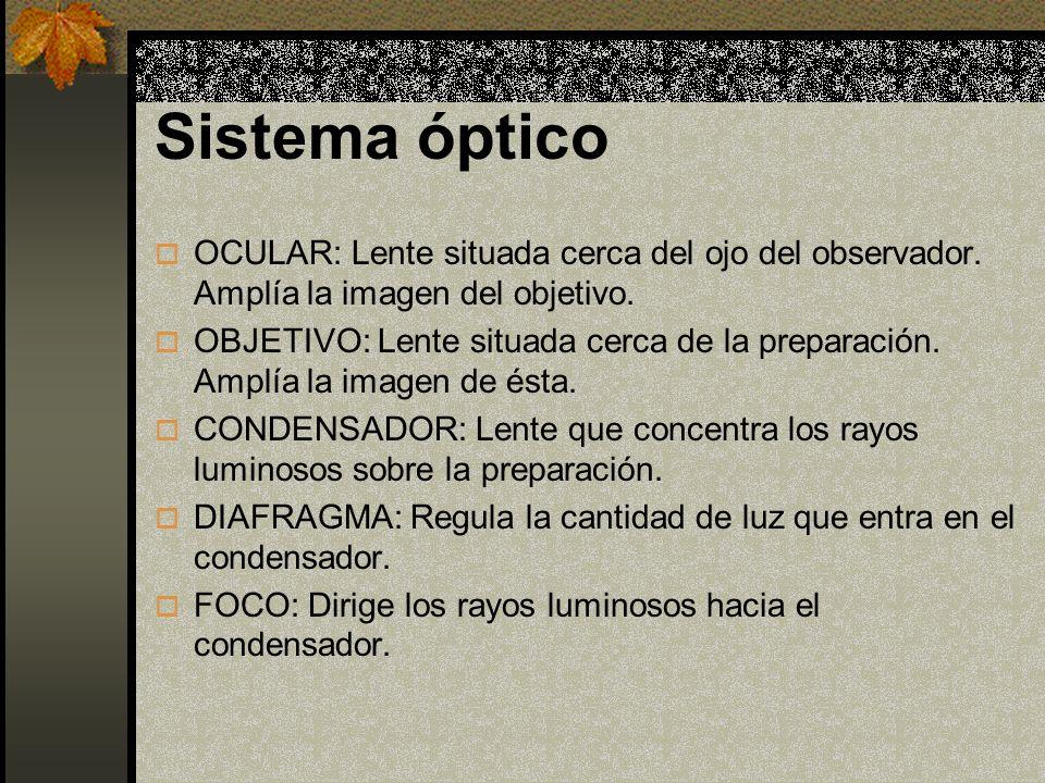 Sistema óptico OCULAR: Lente situada cerca del ojo del observador. Amplía la imagen del objetivo.