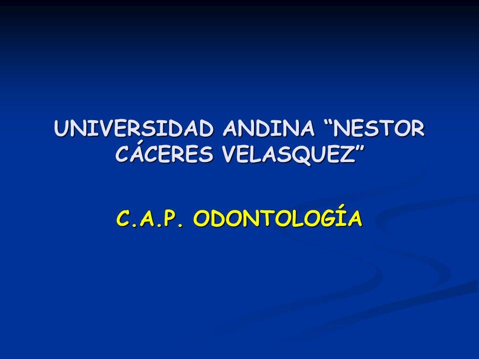 UNIVERSIDAD ANDINA NESTOR CÁCERES VELASQUEZ