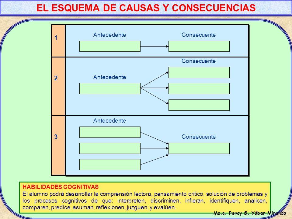 EL ESQUEMA DE CAUSAS Y CONSECUENCIAS Ms.c. Percy S. Yábar Miranda