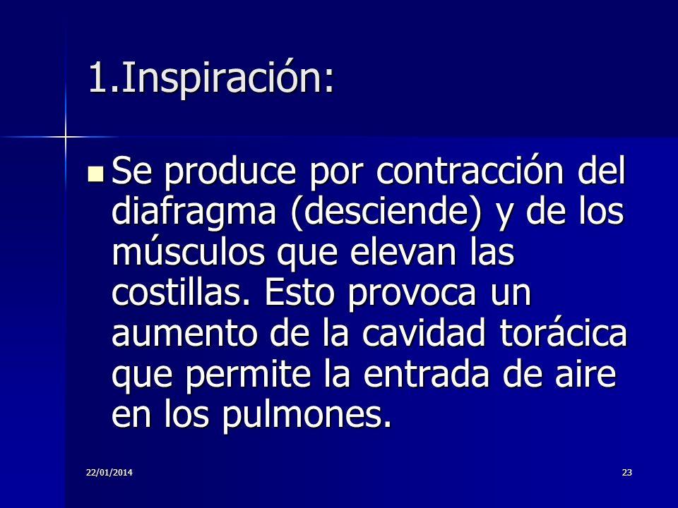 1.Inspiración: