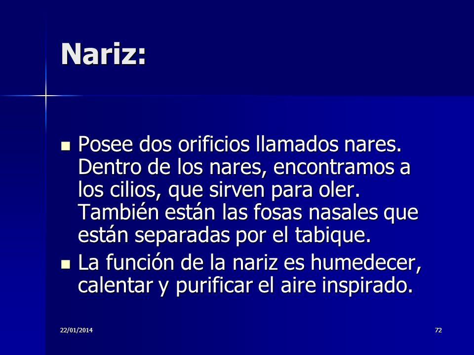 Nariz: