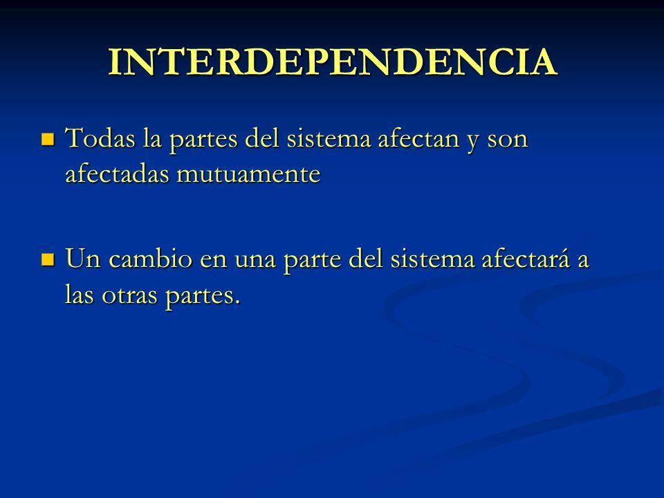 INTERDEPENDENCIA Todas la partes del sistema afectan y son afectadas mutuamente.