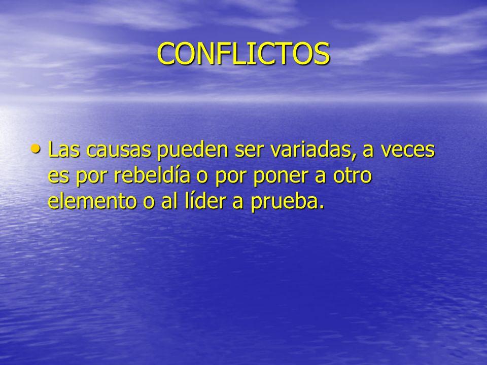CONFLICTOSLas causas pueden ser variadas, a veces es por rebeldía o por poner a otro elemento o al líder a prueba.
