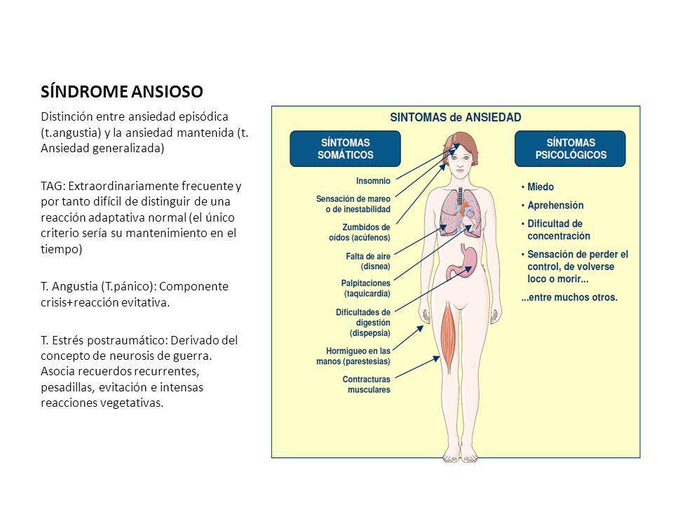 SÍNDROME ANSIOSO Distinción entre ansiedad episódica (t.angustia) y la ansiedad mantenida (t. Ansiedad generalizada)