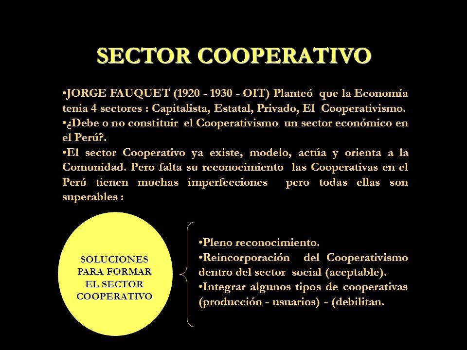 SOLUCIONES PARA FORMAR EL SECTOR COOPERATIVO