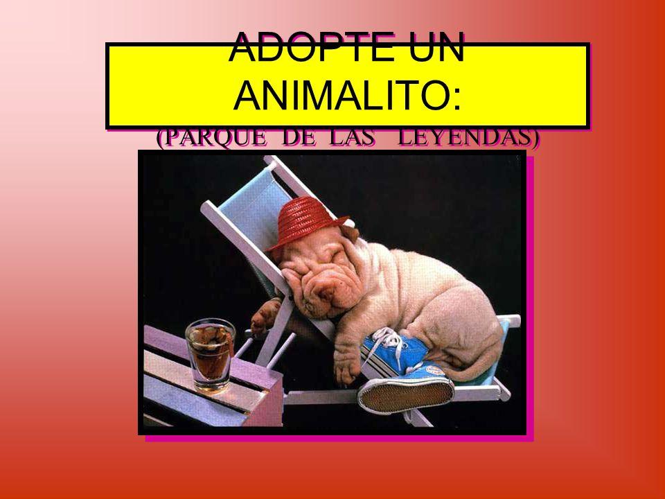 ADOPTE UN ANIMALITO: (PARQUE DE LAS LEYENDAS)