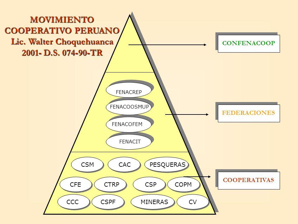 MOVIMIENTO COOPERATIVO PERUANO Lic. Walter Choquehuanca