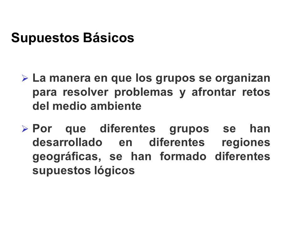 Supuestos Básicos La manera en que los grupos se organizan para resolver problemas y afrontar retos del medio ambiente.