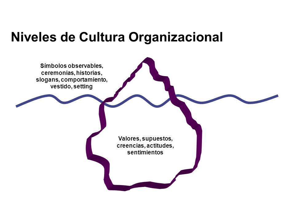 Niveles de Cultura Organizacional