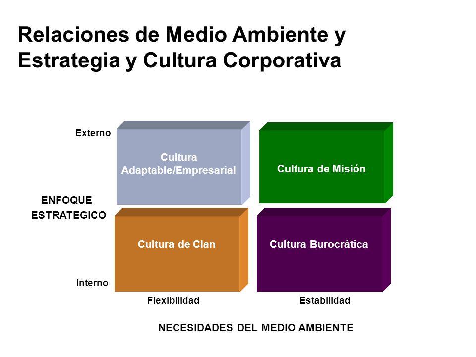 Relaciones de Medio Ambiente y Estrategia y Cultura Corporativa