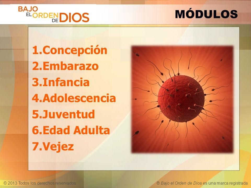 MÓDULOS Concepción Embarazo Infancia Adolescencia Juventud Edad Adulta Vejez