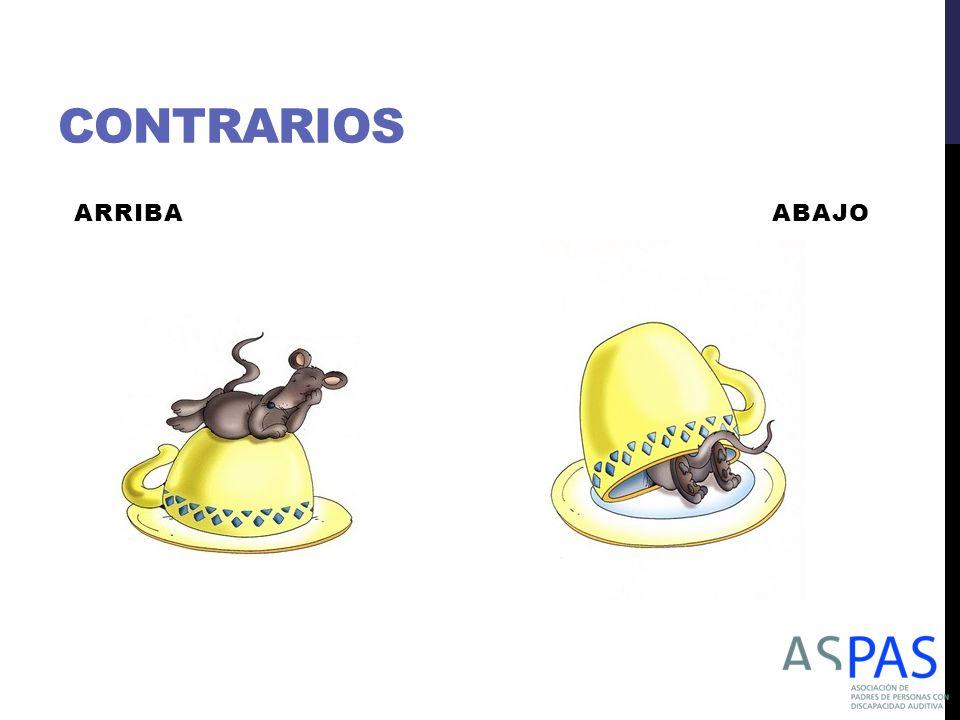 CONTRARIOS ARRIBA ABAJO