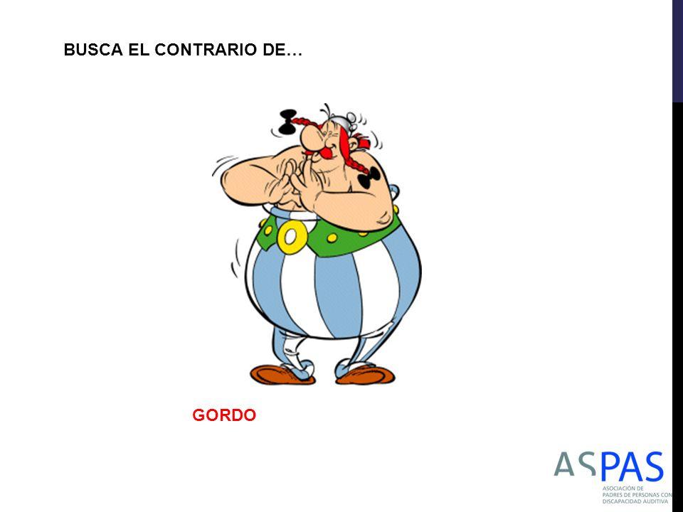 BUSCA EL CONTRARIO DE… GORDO