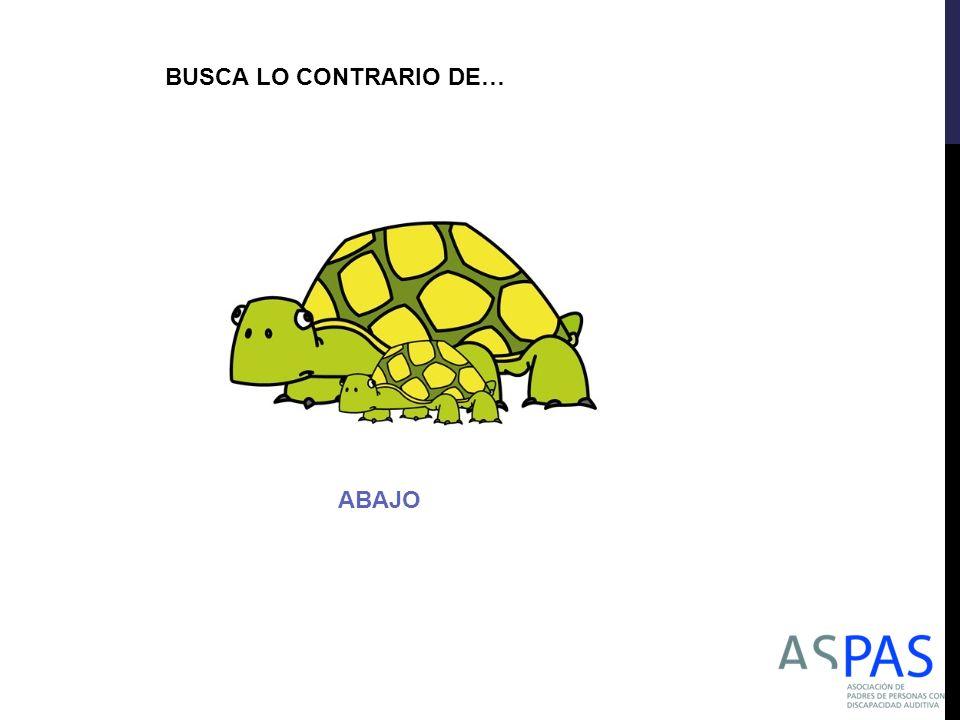 BUSCA LO CONTRARIO DE… ABAJO
