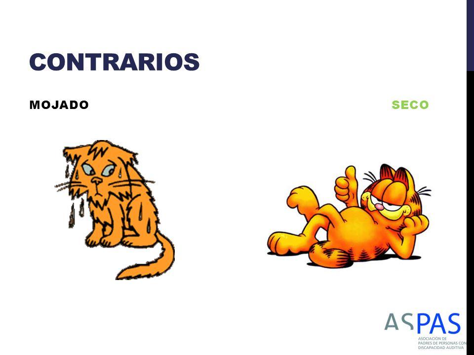 CONTRARIOS MOJADO SECO