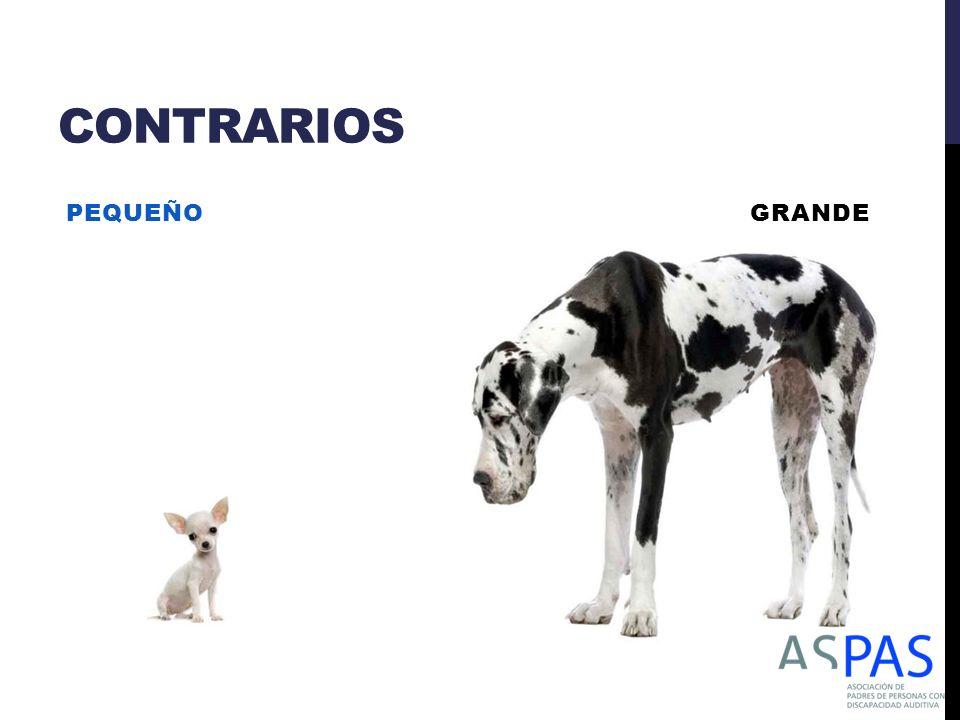 CONTRARIOS PEQUEÑO GRANDE