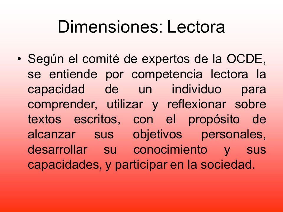 Dimensiones: Lectora