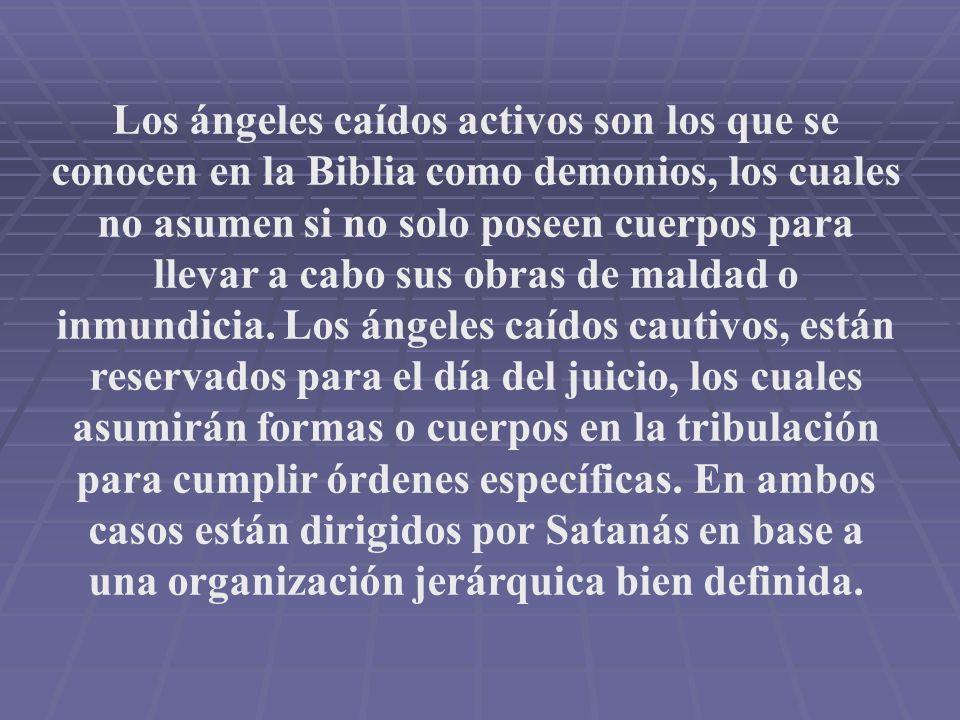 Los ángeles caídos activos son los que se conocen en la Biblia como demonios, los cuales no asumen si no solo poseen cuerpos para llevar a cabo sus obras de maldad o inmundicia.
