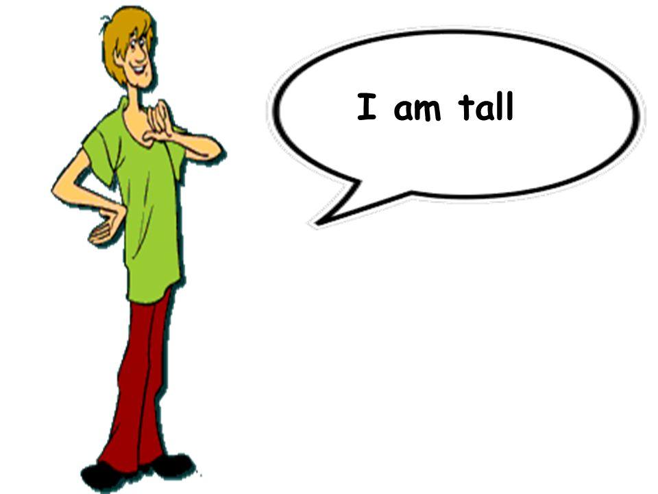 I am tall