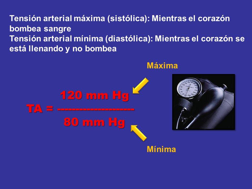 TA = --------------------- 80 mm Hg