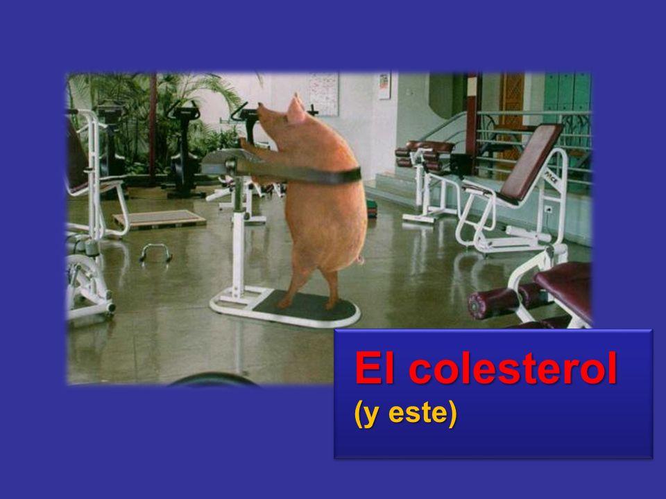 5.- El colesterol alto.- El colesterol es una substancia (grasa) que existe en el organismo y que cumple una serie de funciones; pero cuando su cantidad es excesiva, se deposita en el interior de las arterias contribuyendo a que se obstruyan.
