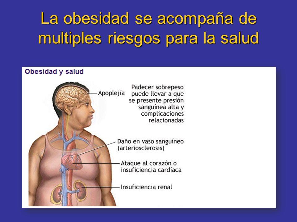 La obesidad se acompaña de multiples riesgos para la salud