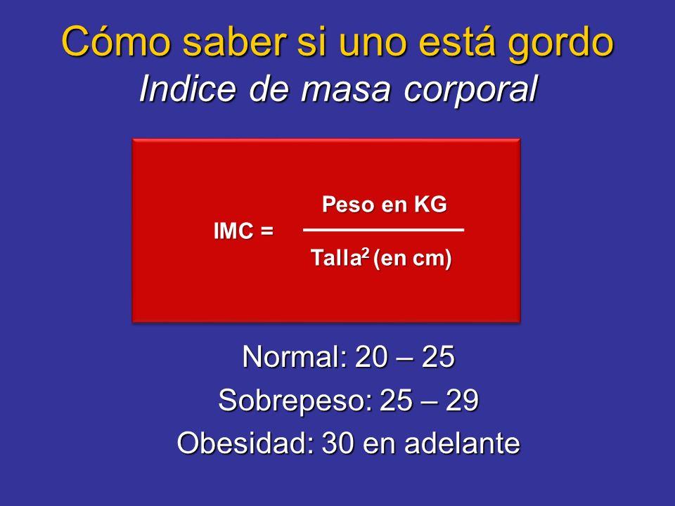 Cómo saber si uno está gordo Indice de masa corporal