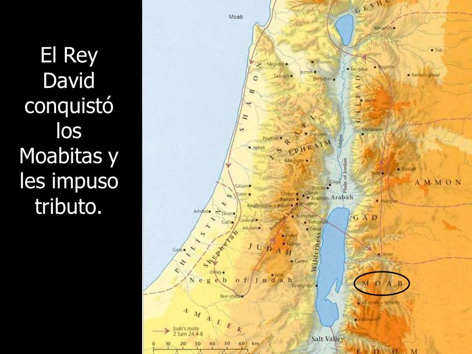 El Rey David conquistó los Moabitas y les impuso tributo.