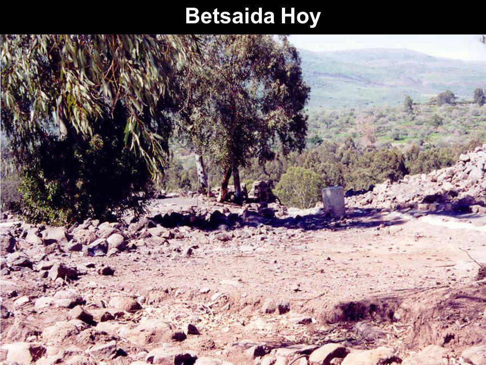Betsaida Hoy