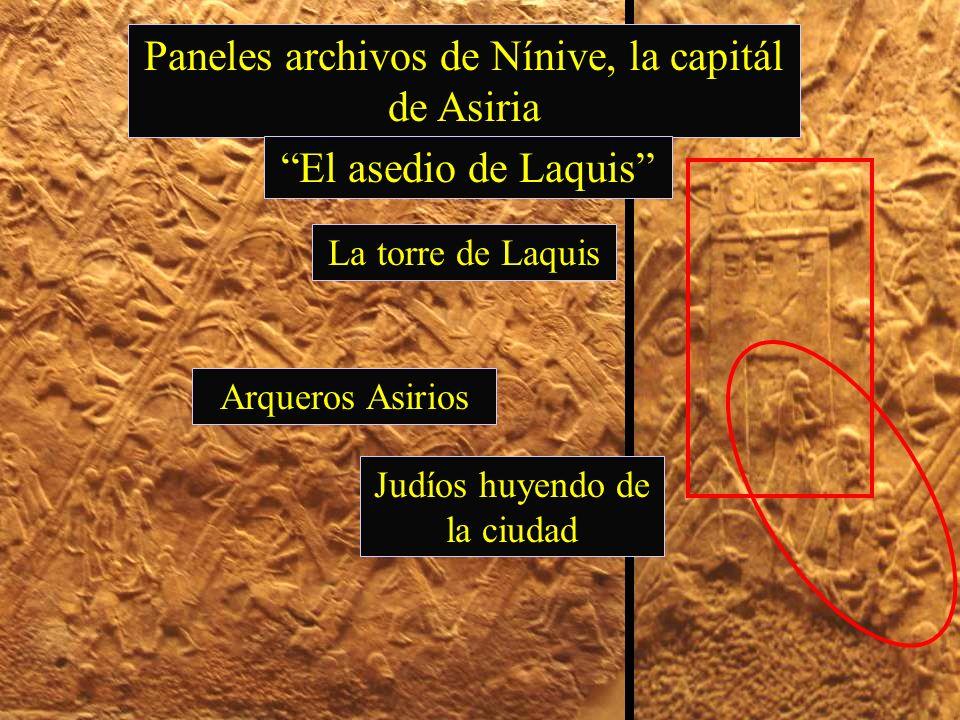 Paneles archivos de Nínive, la capitál de Asiria