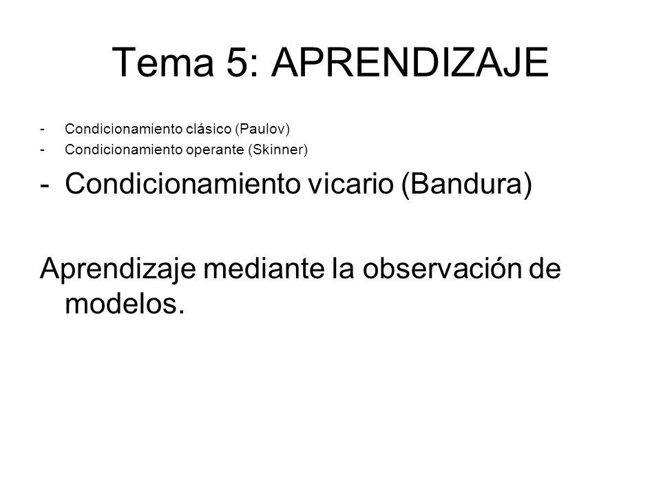 Tema 5: APRENDIZAJE Condicionamiento vicario (Bandura)