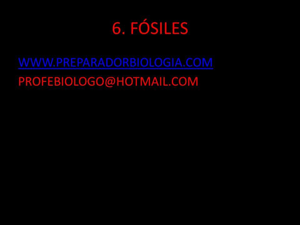 6. FÓSILES WWW.PREPARADORBIOLOGIA.COM PROFEBIOLOGO@HOTMAIL.COM