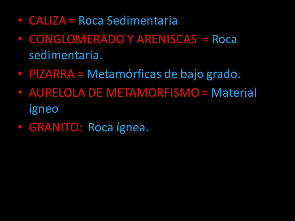 CALIZA = Roca Sedimentaria