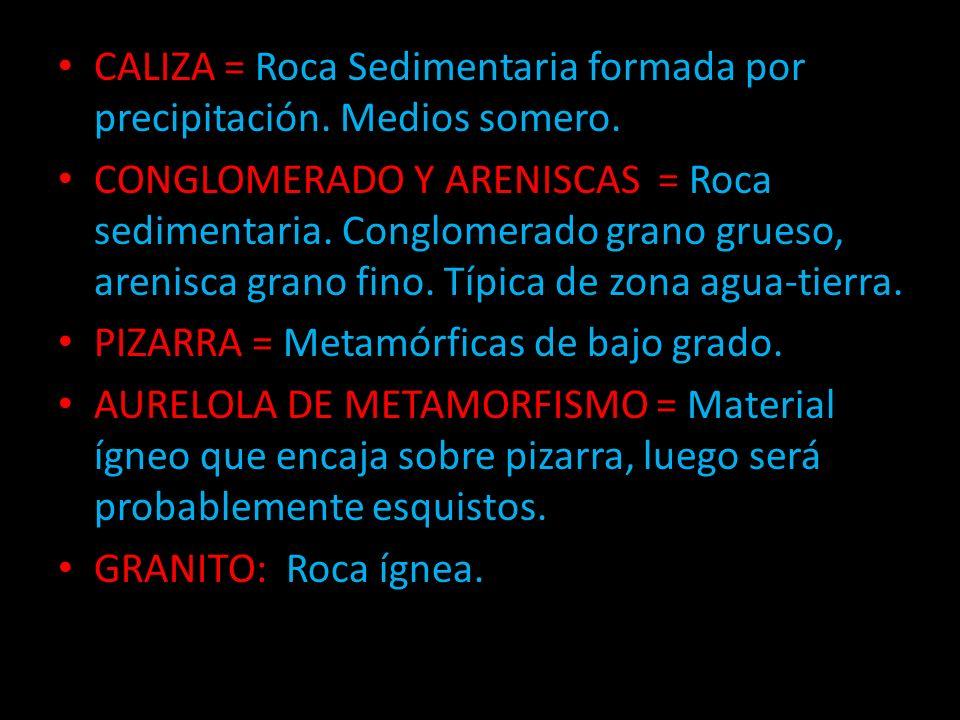 CALIZA = Roca Sedimentaria formada por precipitación. Medios somero.