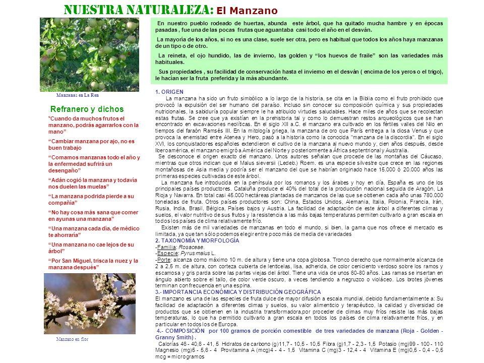 Nuestra Naturaleza: El Manzano