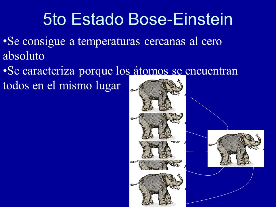 5to Estado Bose-Einstein