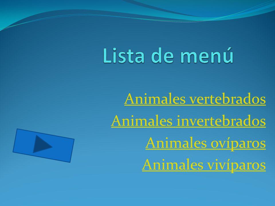 Lista de menú Animales vertebrados Animales invertebrados