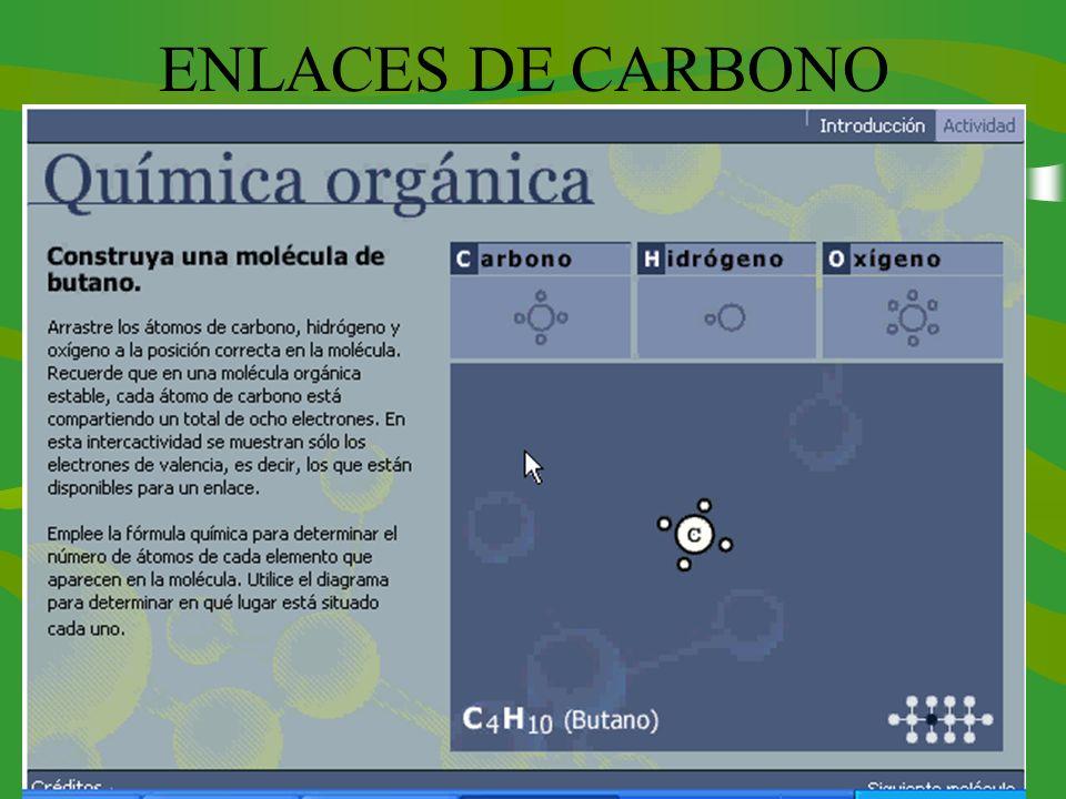ENLACES DE CARBONO