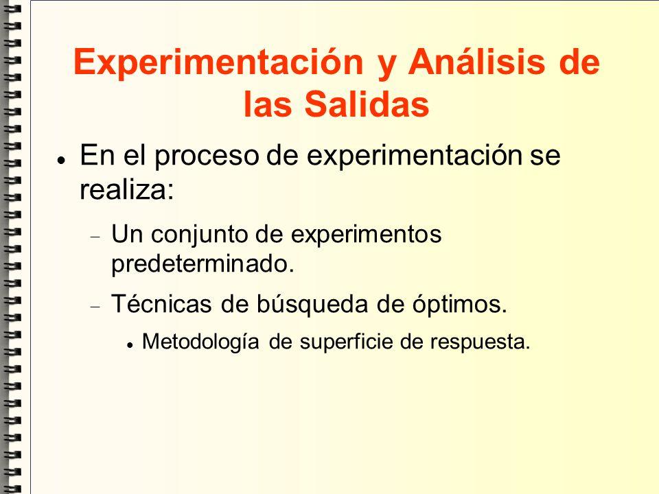 Experimentación y Análisis de las Salidas