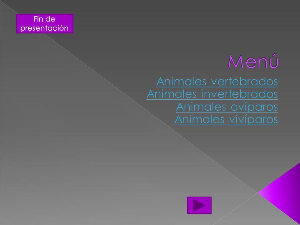 Menú Animales vertebrados Animales invertebrados Animales ovíparos