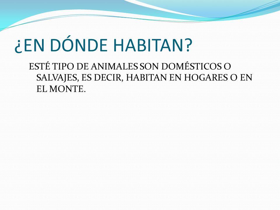 ¿EN DÓNDE HABITAN.