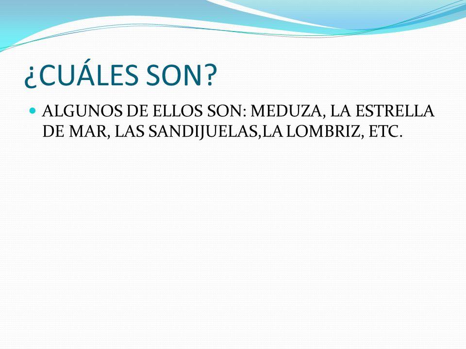 ¿CUÁLES SON ALGUNOS DE ELLOS SON: MEDUZA, LA ESTRELLA DE MAR, LAS SANDIJUELAS,LA LOMBRIZ, ETC.
